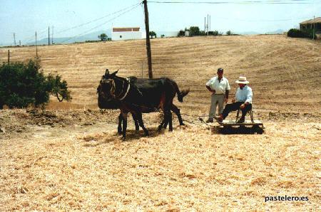 Trilla con mulo y rulo