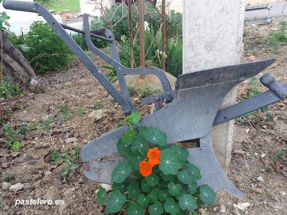 Arado de hierro para arar la tierra con yunta de mulos